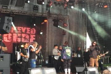Endspurt beim Rocco: Festival auf Köllerbacher Sauwasen präsentiert Popkultur auf höchstem internationalem Niveau
