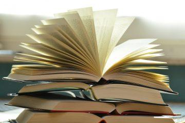 Leseinsel der Stadtbibliothek lädt ein zum Sommerlesen